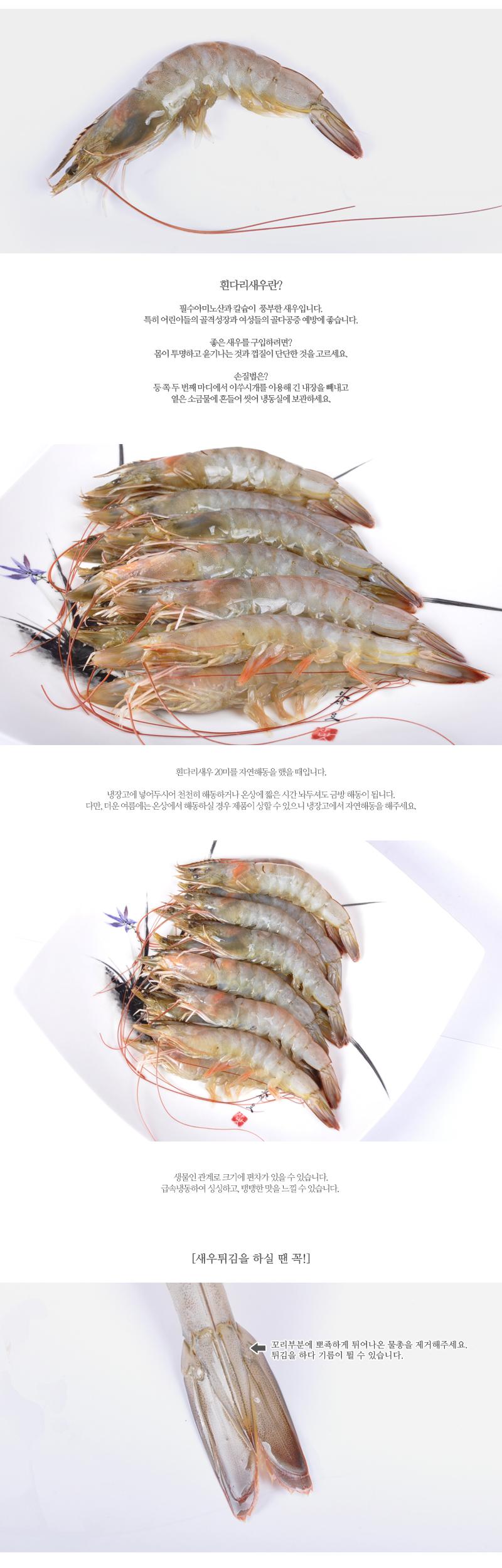 shrimp_02_01.jpg